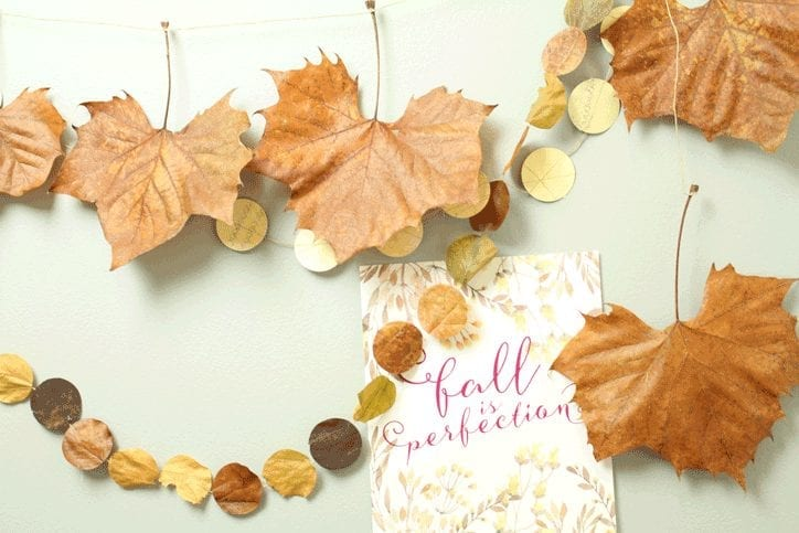 Fall is perfection download and DIY crafts