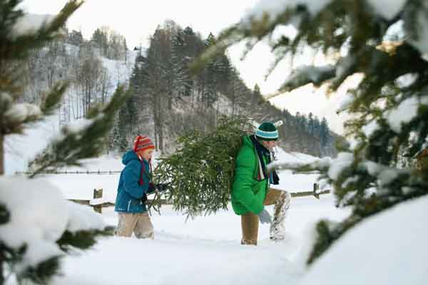 5 awesome family traditions your family can start