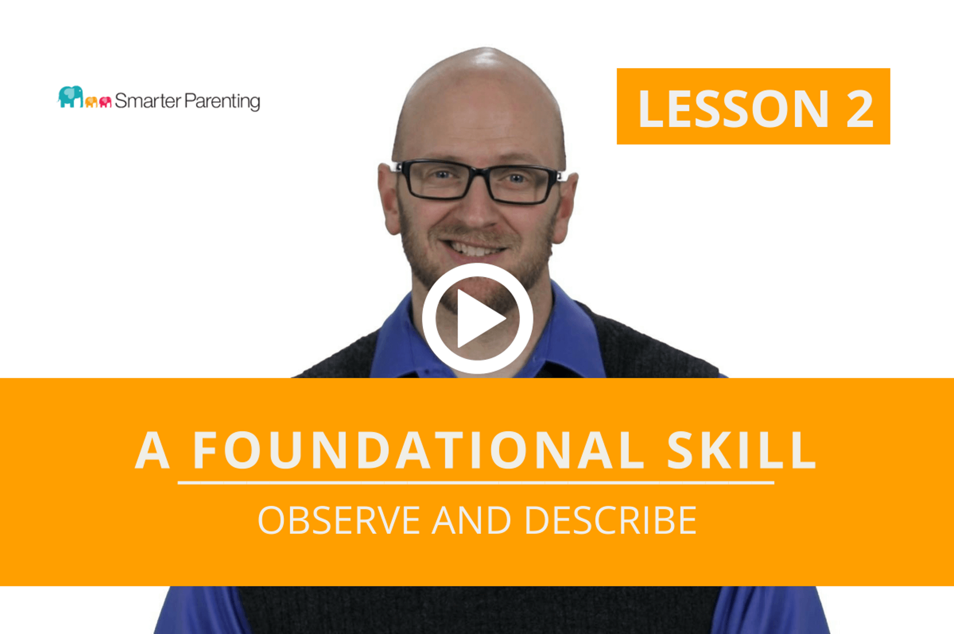 Observe and Describe lesson link
