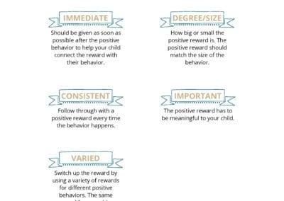 Components of Effective Positive Rewards